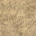 7(84)furniture-gloss